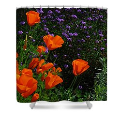 Shower Curtain featuring the photograph California Poppies by Lynn Bauer