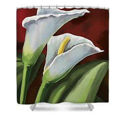 Calla Lilies  Shower Curtain by Tim Gilliland