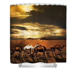 Camels Shower Curtain