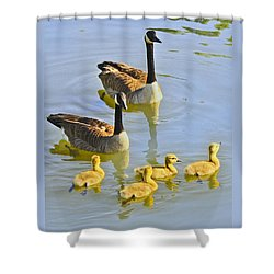 Canadian Goose Family Shower Curtain
