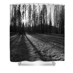 Charred Silence - Yosemite Rim Fire 2013 Shower Curtain
