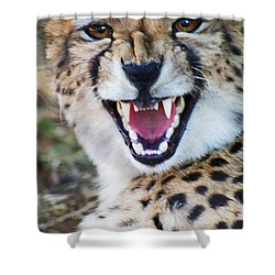 Cheetah With Attitude Shower Curtain