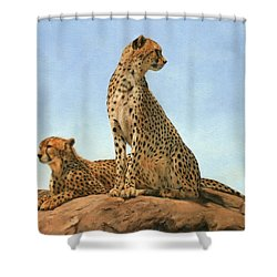 Cheetahs Shower Curtain by David Stribbling