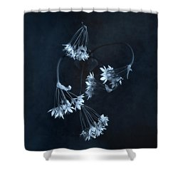 Chive Blossoms Shower Curtain by Louise Kumpf