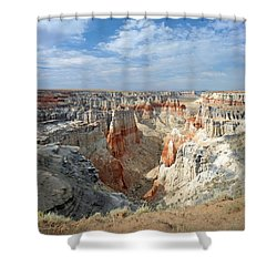 Coal Mine Mesa 14 Shower Curtain by Jeff Brunton