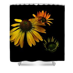 Cones Shower Curtain