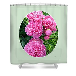 Country Peonies Shower Curtain