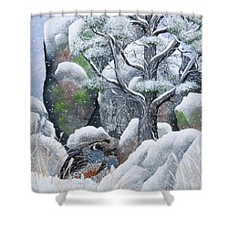 Cozy Couple Shower Curtain by Jennifer Lake