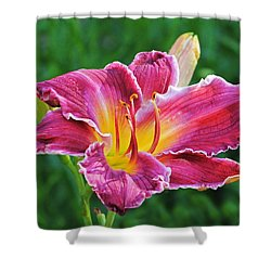 Crimson Day Lily Shower Curtain
