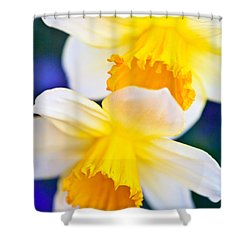 Shower Curtain featuring the photograph Daffodils by Roselynne Broussard