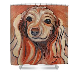 Daschound Shower Curtain