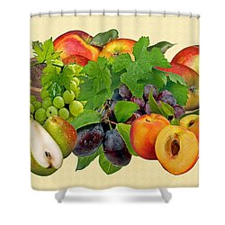Day Fruits Shower Curtain