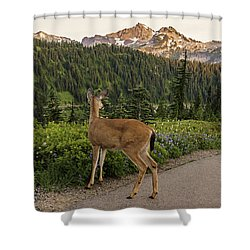 Deer At Rainier Shower Curtain