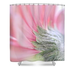 Delicacy Shower Curtain by Andrea Kollo