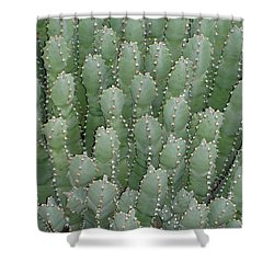Desert Soldiers Shower Curtain