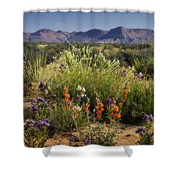 Desert Wildflowers Shower Curtain by Saija  Lehtonen