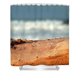 Drift Wood Shower Curtain by Henrik Lehnerer