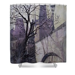 Dusk At The Charles Bridge Shower Curtain