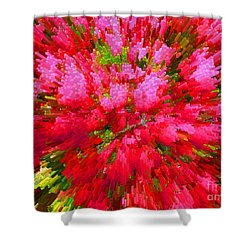 Explosion Of Spring Shower Curtain