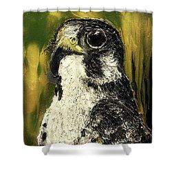 Falcon Shower Curtain