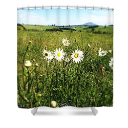 Field Of Flowers Shower Curtain by Les Cunliffe