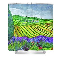 Fields At Dievole Shower Curtain