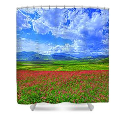 Fields Of Dreams Shower Curtain by Midori Chan