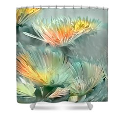 Shower Curtain featuring the photograph Fiesta Floral by Alfonso Garcia