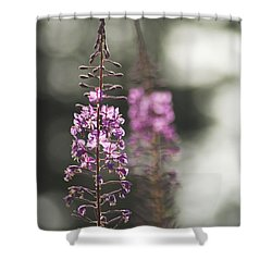 Shower Curtain featuring the photograph Fireweed by Yulia Kazansky