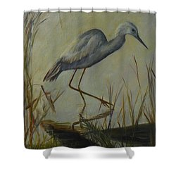 Florida Native Bird On A Fall Morning Shower Curtain
