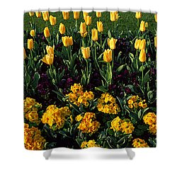 Flowers In Hyde Park, City Shower Curtain