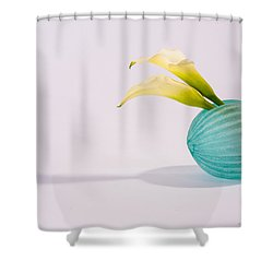 Flowers In Vases 8  Shower Curtain