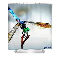Fly Dragon Shower Curtain