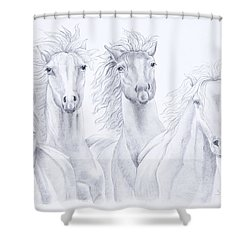 Four For Freedom Shower Curtain