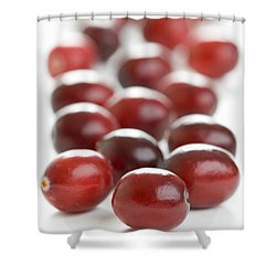Shower Curtain featuring the photograph Fresh Cranberries Isolated by Lee Avison