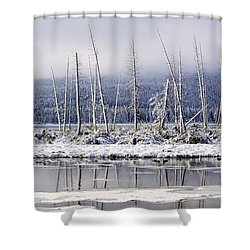 Fresh Snowfall And Bare Trees Shower Curtain by Ken Gillespie