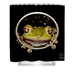 Shower Curtain featuring the photograph Frog by Olga Hamilton