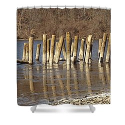 Frozen Pilings Shower Curtain by Michael Porchik