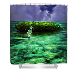 Full Moon Fishing Shower Curtain