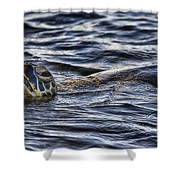 Gasp For Air Shower Curtain by Douglas Barnard