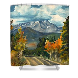 Shower Curtain featuring the painting Gayle's Highway by Mary Ellen Anderson