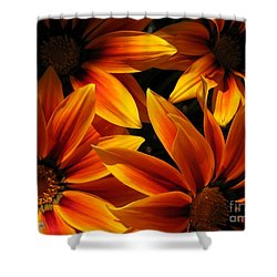 Shower Curtain featuring the photograph Gazania Named Kiss Orange Flame by J McCombie