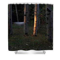 Ghostly Apparition Shower Curtain