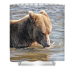 Go Ahead Make My Day Shower Curtain by Dyle   Warren