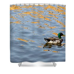 Golden Ripples Shower Curtain by Keith Armstrong