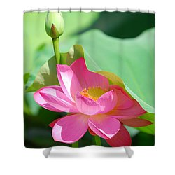 D48l-96 Water Lily At Goodale Park Photo Shower Curtain