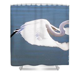 Great Egret In Flight Shower Curtain by Thomas Marchessault