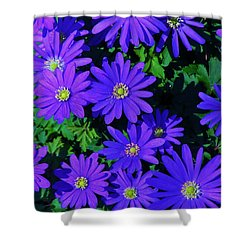 Grecian Wildflowers Shower Curtain by John Wartman