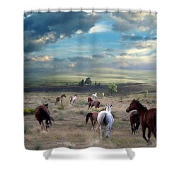 Greener Pastures Shower Curtain by Bill Stephens