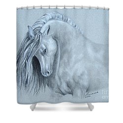 Grey Horse Shower Curtain